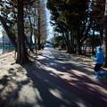 Photos: 朝の散歩