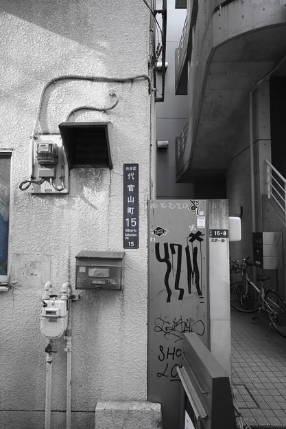 写真: 挑戦!ミルカマの世界1『Y7M』