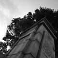 Photos: DSC_9989