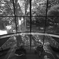 Photos: HARA ART MUSEUM_7786