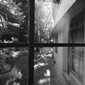 Photos: HARA ART MUSEUM_7782
