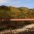 写真: 千手ヶ浜から西ノ湖への遊歩道20151010