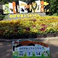 Photos: 野毛山動物園