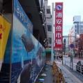 写真: 浦安魚市場