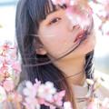 写真: 藍色_20180304-15