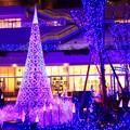 Photos: メリークリスマス