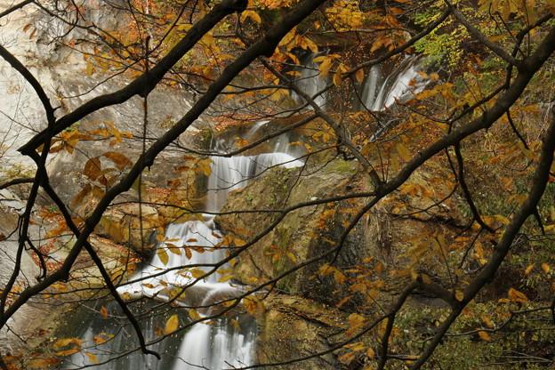 萱滝 (山形県上山市萱平) (2)