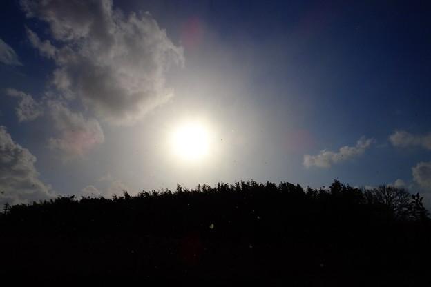 写真: 晴れた日の雪