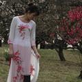 写真: 紅梅の園