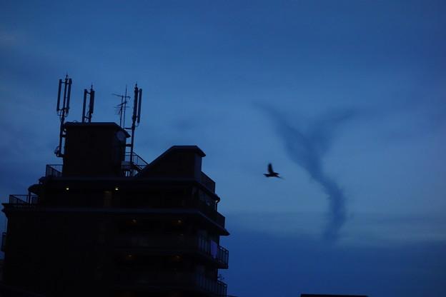 写真: 不思議雲