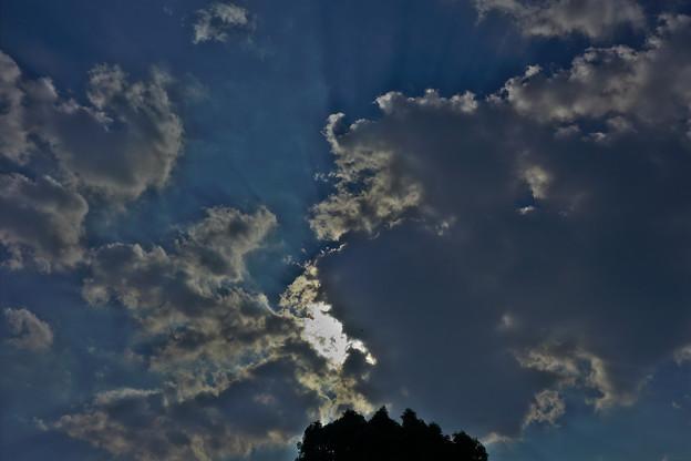 ペガサスの空