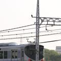 写真: 電車とハヤブサさん