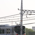 Photos: 電車とハヤブサさん