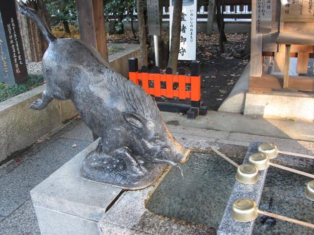 護王神社(いのしし神社)