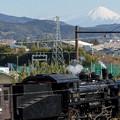 Photos: 大井川鐵道 金谷~新金谷