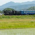 写真: JR北陸本線 坂田~米原