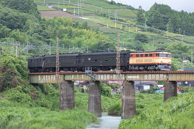 Photos: 大井川鐵道 新金谷~金谷