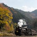 Photos: JR山口線 船平山~津和野