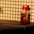 写真: 放置された梅酒