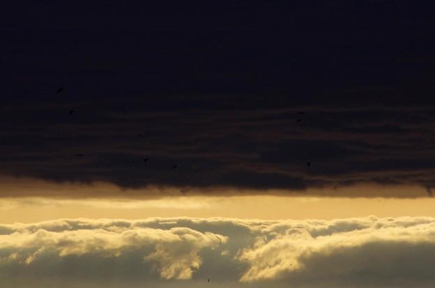 写真: 夕日 2