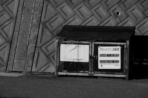 Photos: ぽつん