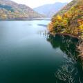 ダム湖の紅葉A