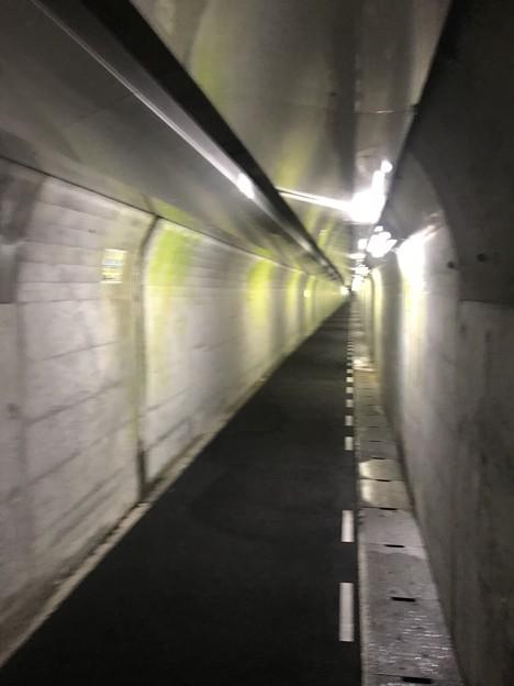 温井ダム 内部の通路