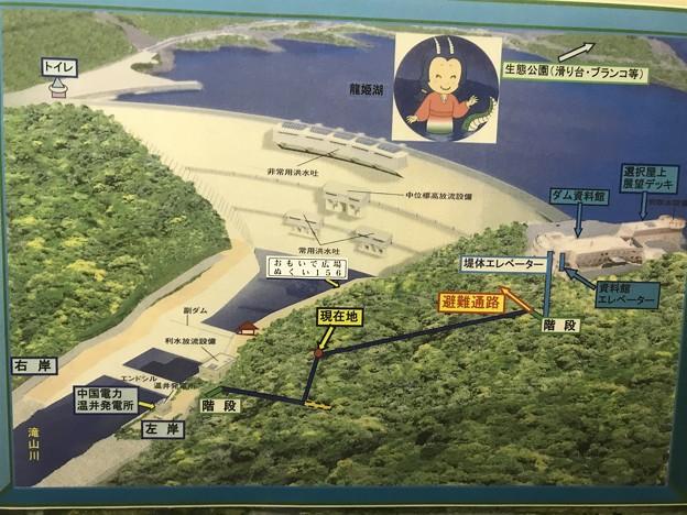 温井ダム 全景図