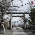写真: 春の護国神社と剱岳