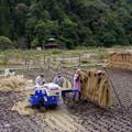 写真: 脱穀風景