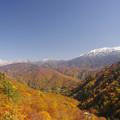 薬師岳と有峰の紅葉
