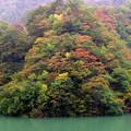 祖山ダム湖畔の紅葉