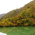 Photos: 庄川の紅葉