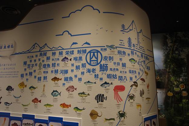 のと里山里海ミュージアム