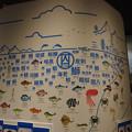 写真: のと里山里海ミュージアム