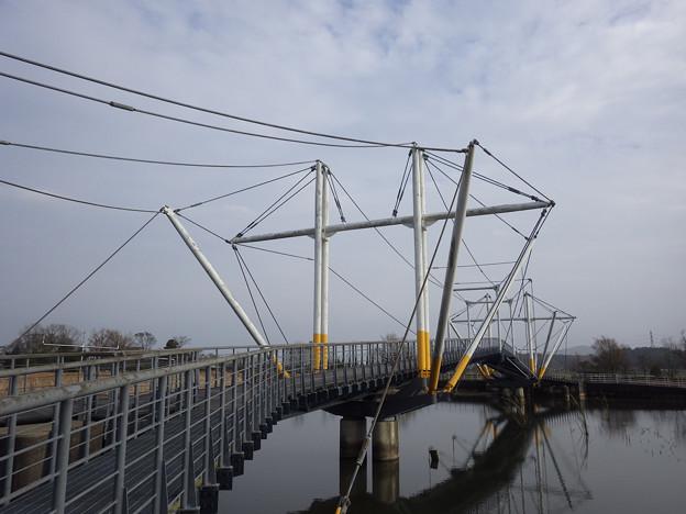 芸術的な橋