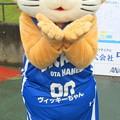 Photos: ヴィッキーちゃん
