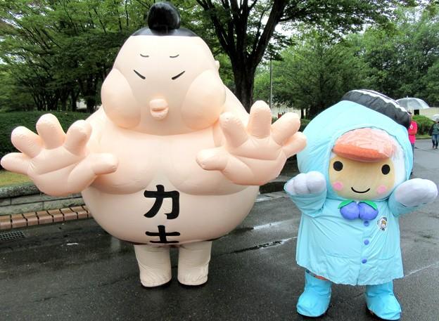 Photos: ぴあにしき と とまチョップ