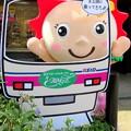 Photos: 京王線に乗ってきた・・サマーちゃん