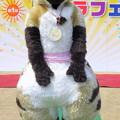 Photos: きゃらコレ14・アキマ