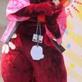 Photos: えぼし麻呂のぬいぐるみを抱く・・マヨリカ