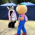 Photos: 咲鶴の前を横切る・・ひのじゃがくん