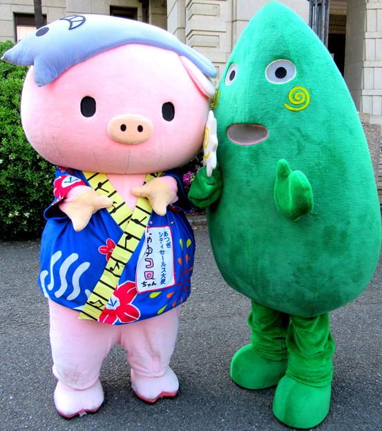 あゆコロちゃん と ヤマトン