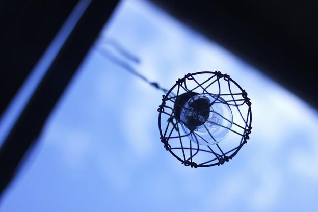 写真: 電球