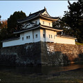 写真: 暁の東南隅櫓