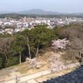 Photos: 20180408松江城?