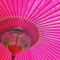 写真: 和傘
