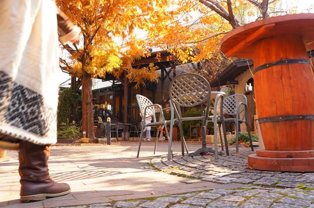 秋の昼下がり