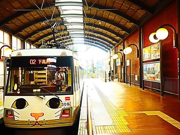 ニャンコ電車