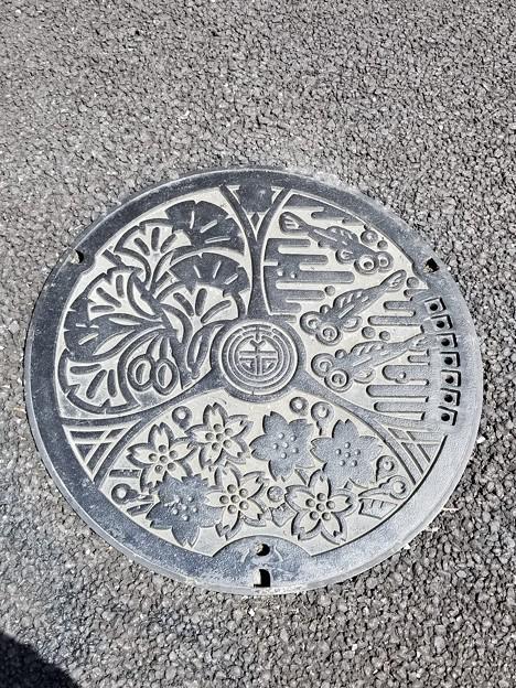 千川上水のフタ